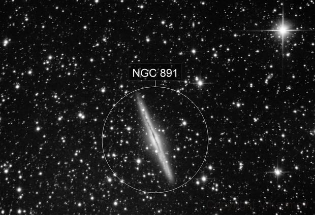 NGC 891
