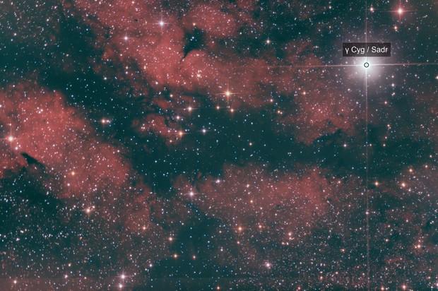 Butterfly Nebula & Sadr