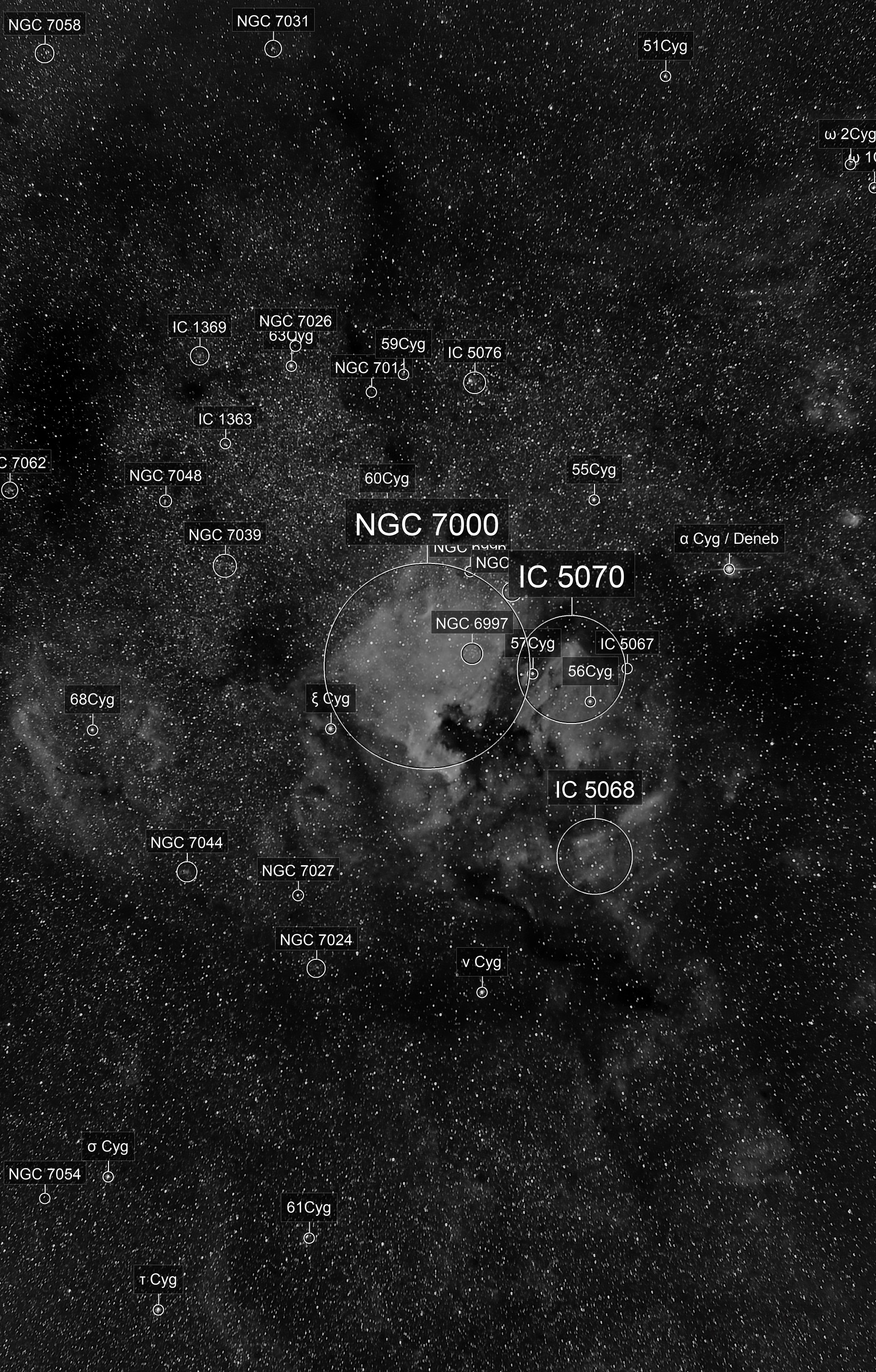 NGC7000 at 85mm in Halpha