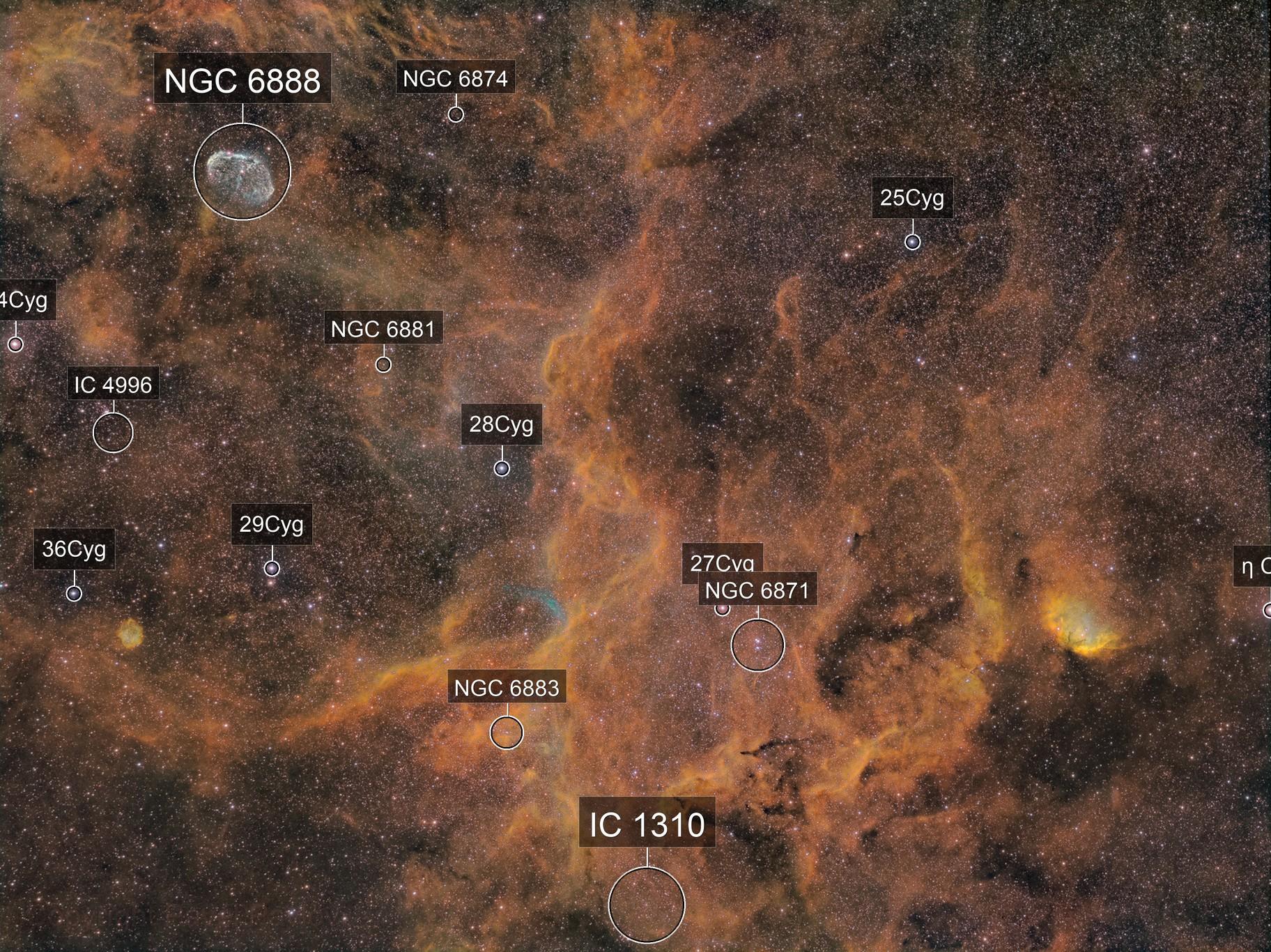 Center of Cygnus