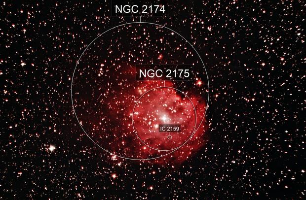 NGC 2175