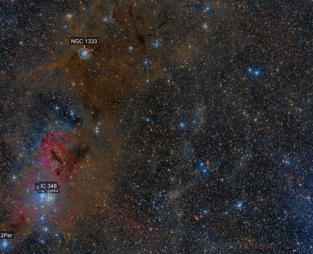 Region NGC 1333 and IC 348 Dust and Gas in Perseus