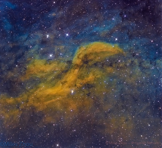 Propeller Nebula @ DSW (SHO)