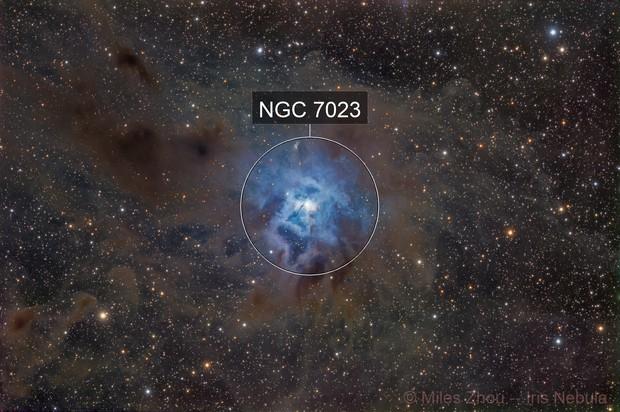 Iris Nebula (NGC 7023)