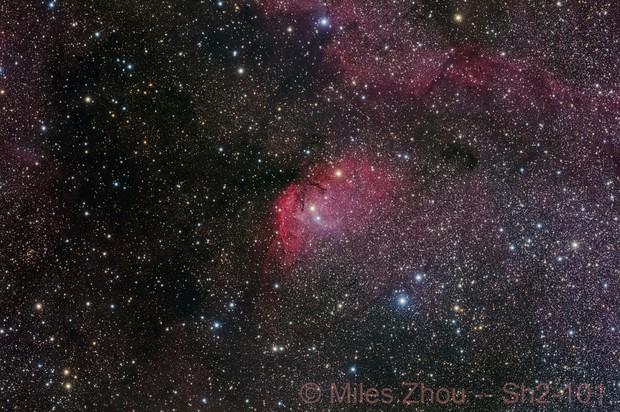 Tulip Nebula (Sharpless 2 - 101, RGB)