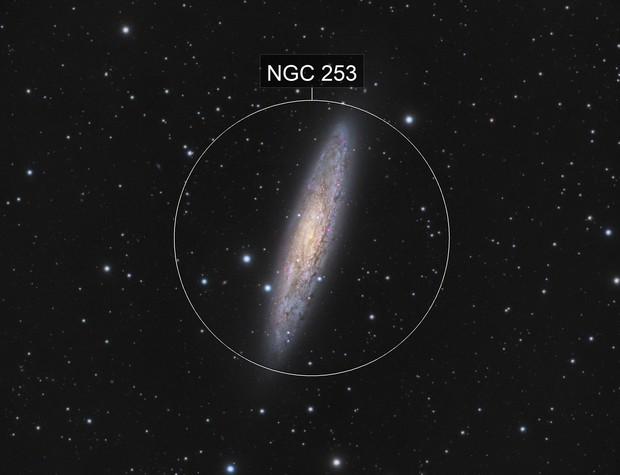NGC 253 TeamWork