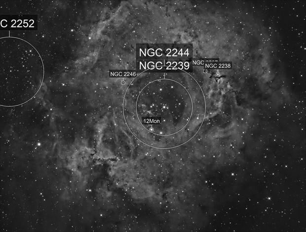 Rossette Nebula