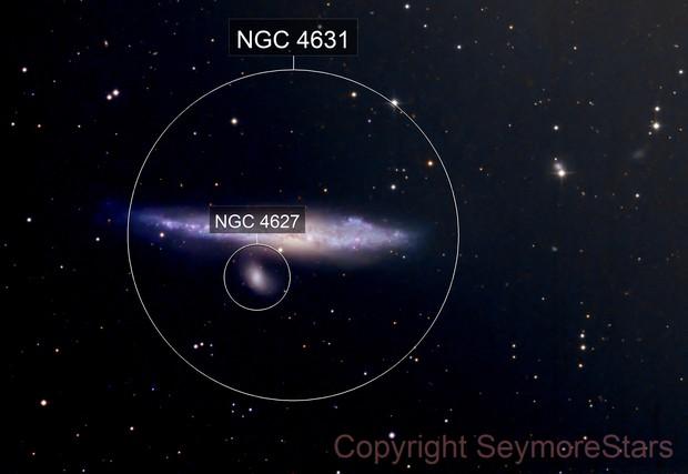 Whale Galaxy - NGC 4631