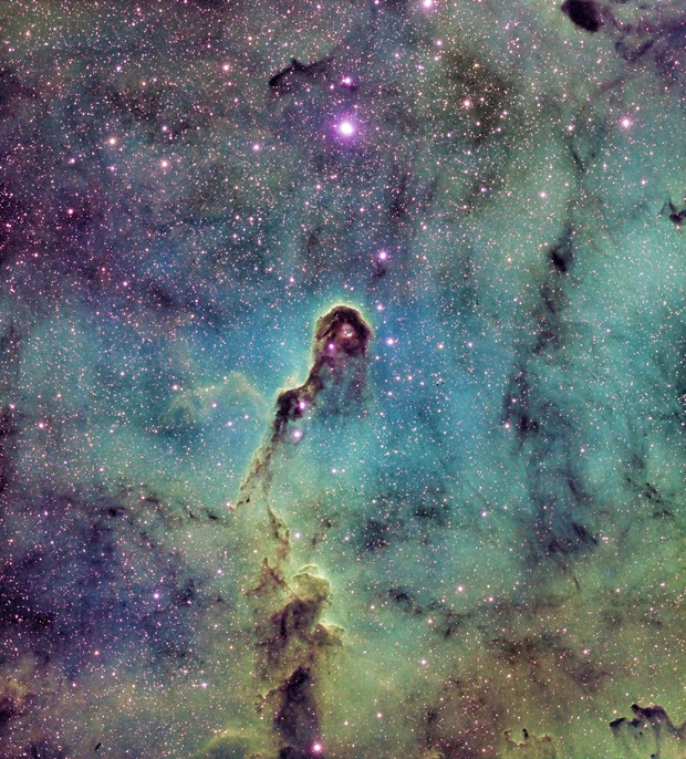 IC1396 Elephant Trunk SHO
