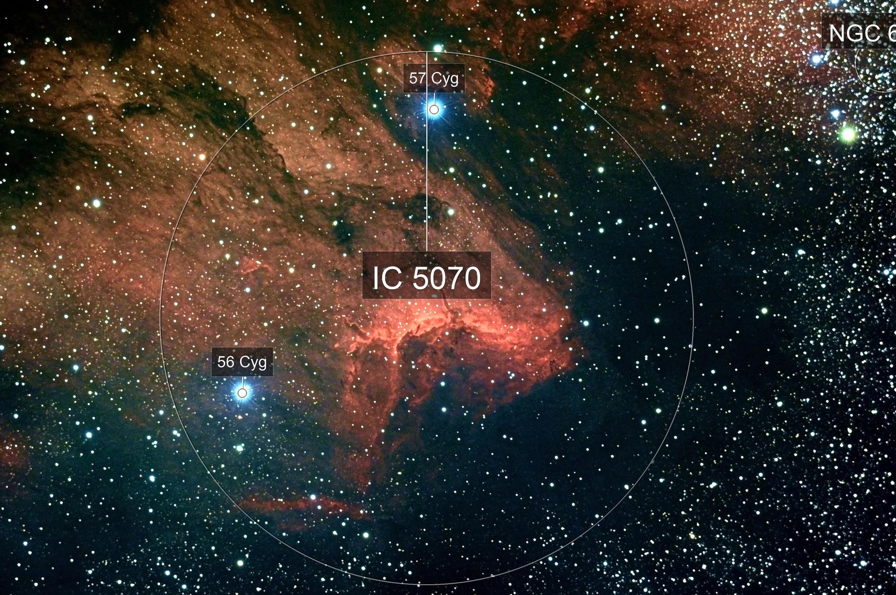 IC5070 - Pelican Nebula