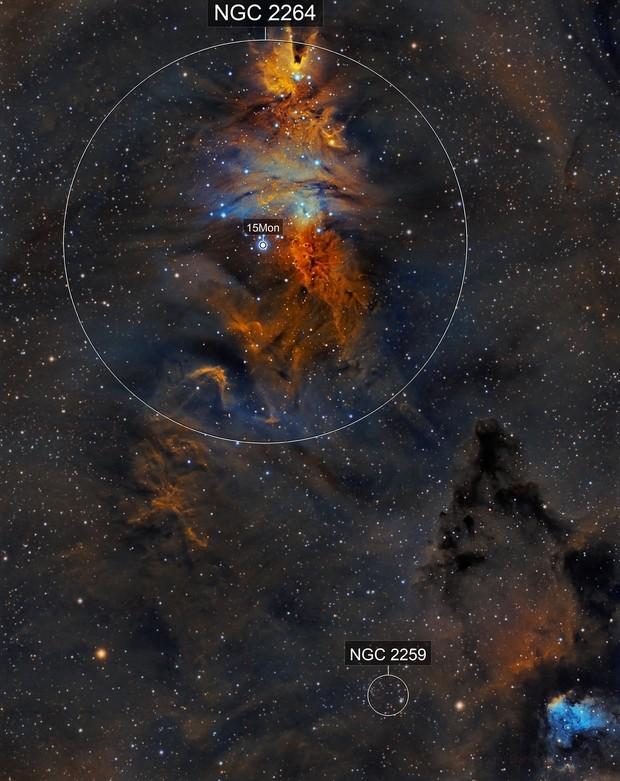 NGC2264 Christmas Tree Cluster, Cone Nebula