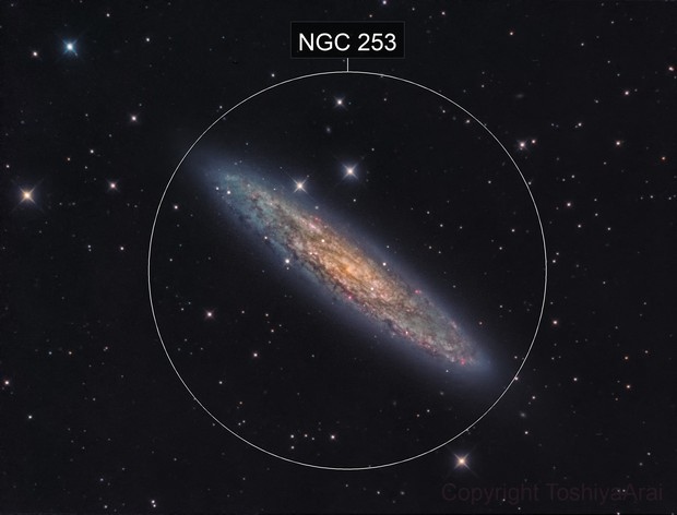 NGC253:  Sculptor Galaxy