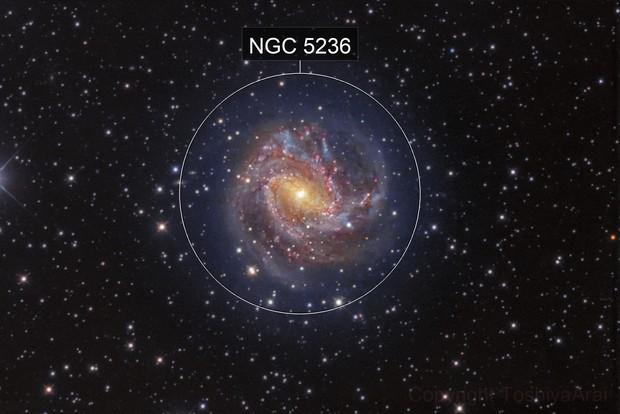 M83 :The Southern Pinwheel Galaxy