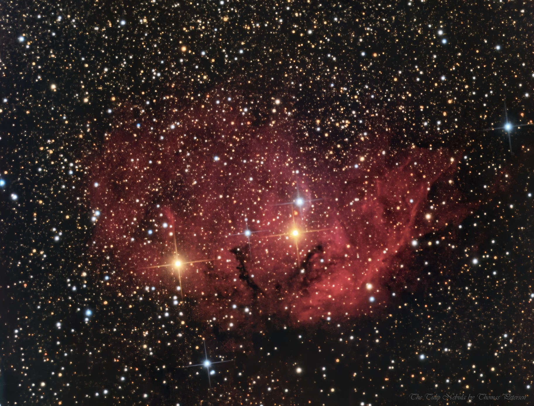 The Tulip Nebula (sh2-101)