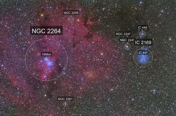 NGC2264  IC2169