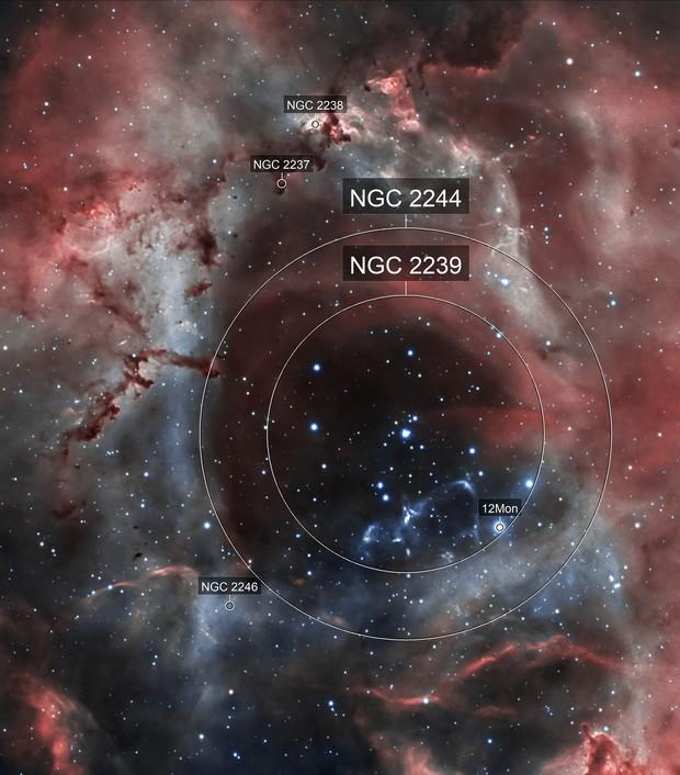 Rosette Nebula (NGC 2244) in HOO