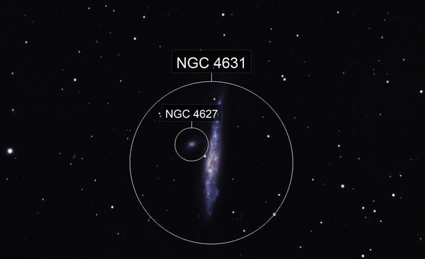 NGC-4631, Whale Galaxy