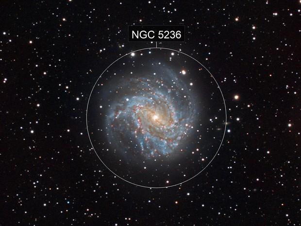 Southern Pinwheel Galaxy (M 83)
