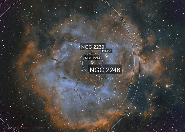 NGC 2237 / C 49 - Rosette Nebula