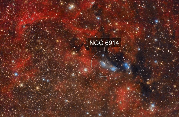 NGC 6914 + VdB 131 + VdB 132 with surrounding Ha