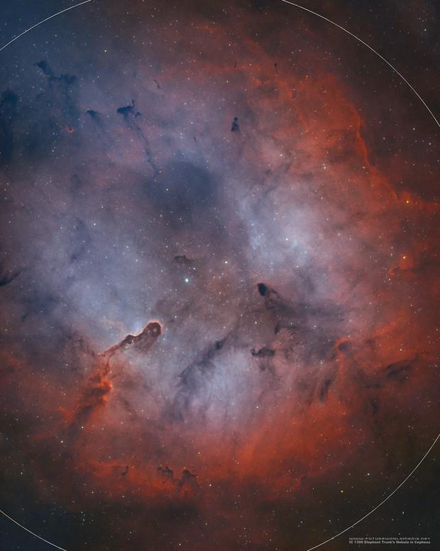 IC 1396 Elephant's Trunk Nebula in HOO