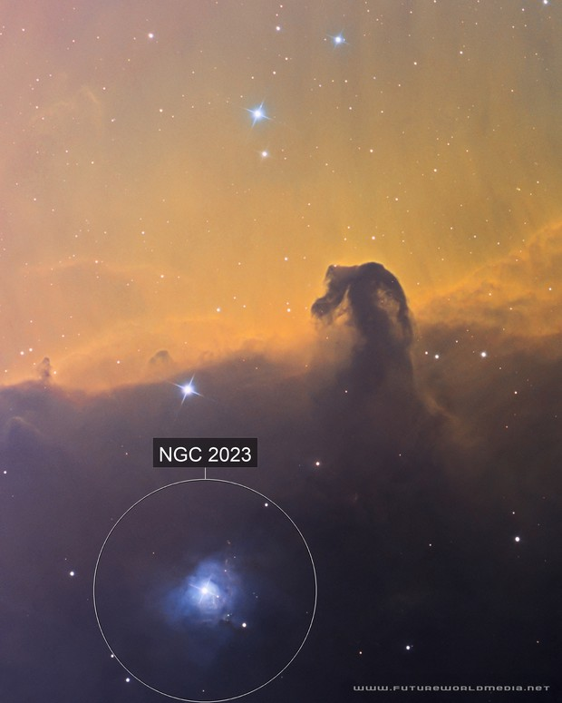 IC 434 •The Horsehead Nebula in SHO