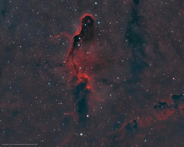 IC 1396 • Elephant's Trunk Nebula in HOO