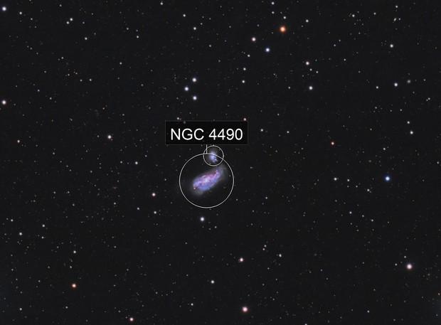 NGC 4490 / NGC 4485 / ARP 269