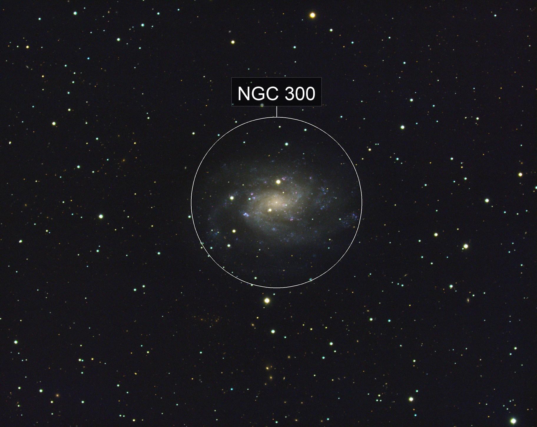 NGC 300 The Southern Pinwheel