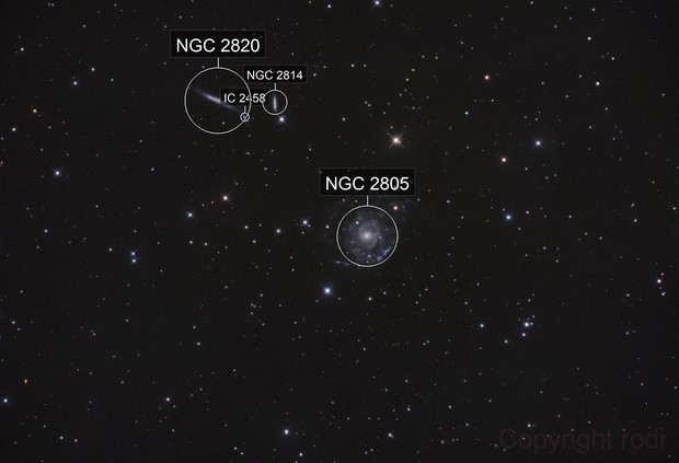 NGC2805 and Friends (Holmberg 124)