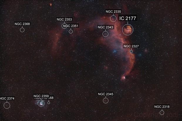 Thor's Helmet NGC2359, Seagull-Nebula IC2177  --  Tri-Narrow-Band shot