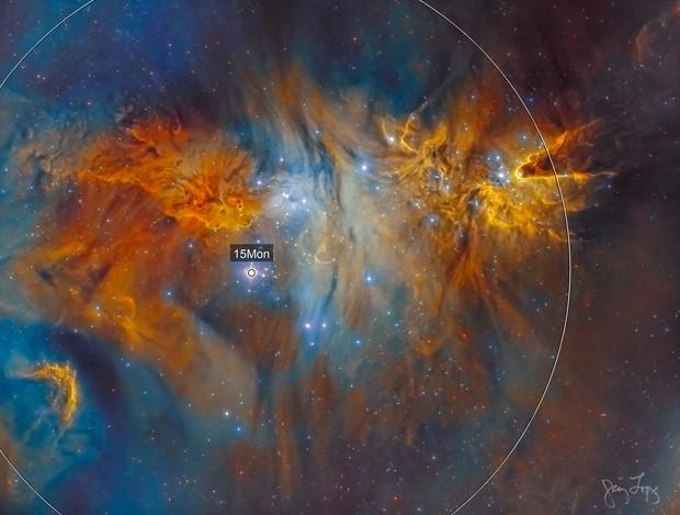 Christmas Tree Cluster (NGC 2264)
