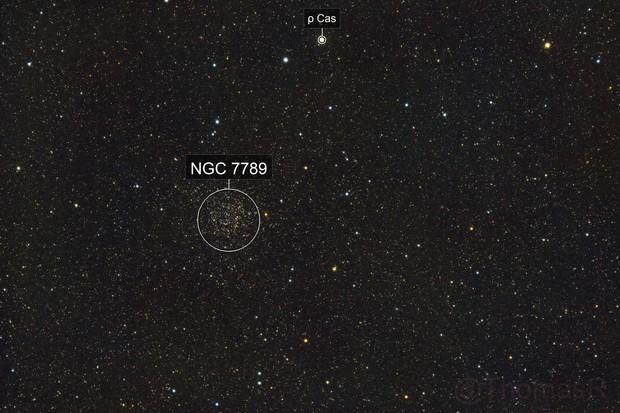 NGC 7789: Caroline's Rose