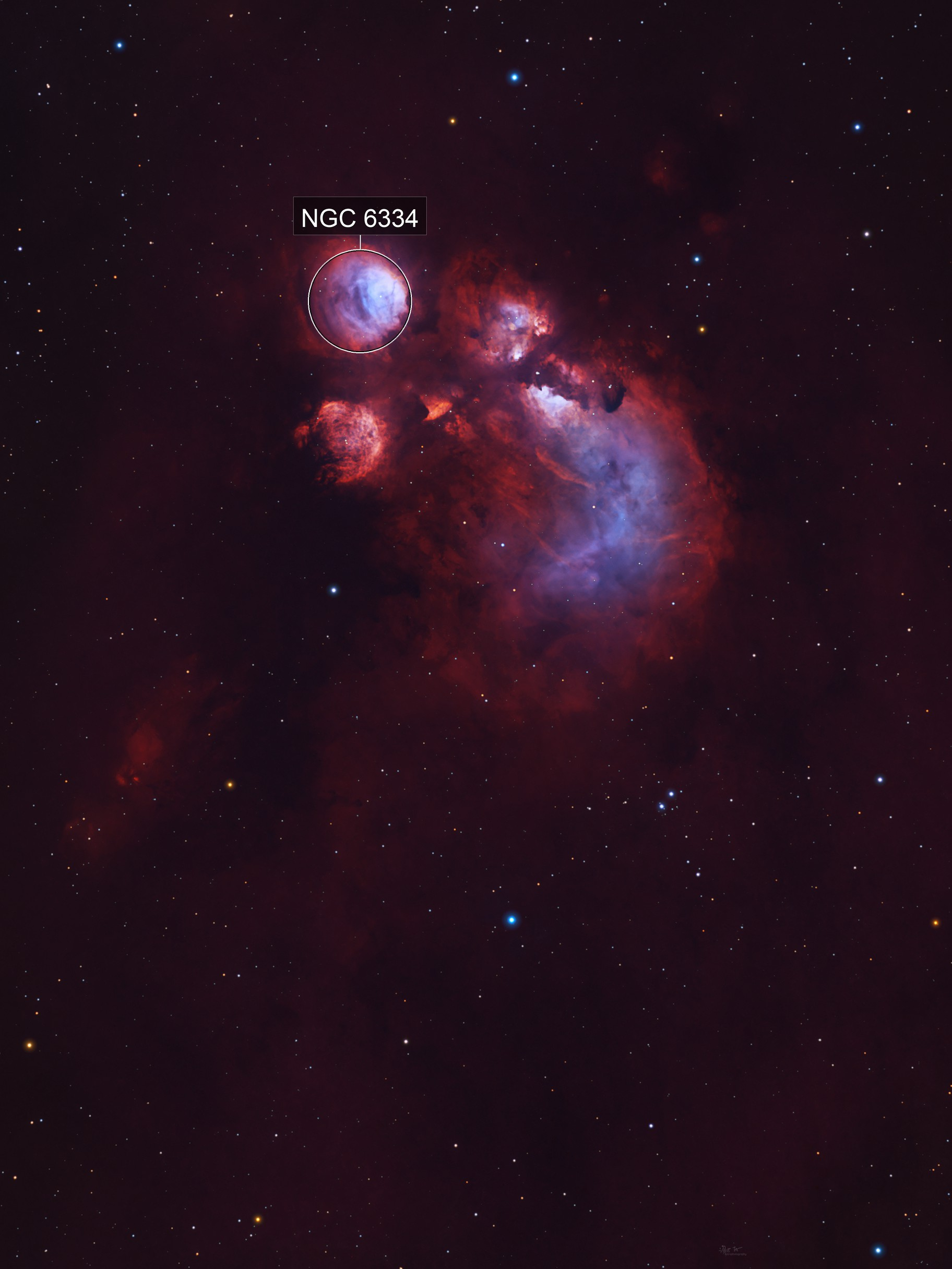 From the North: Cat's Paw Nebula Wide-Field