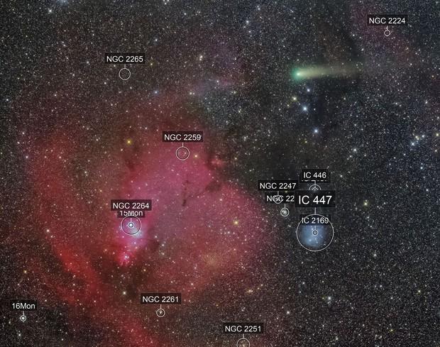 21P and around NGC2264