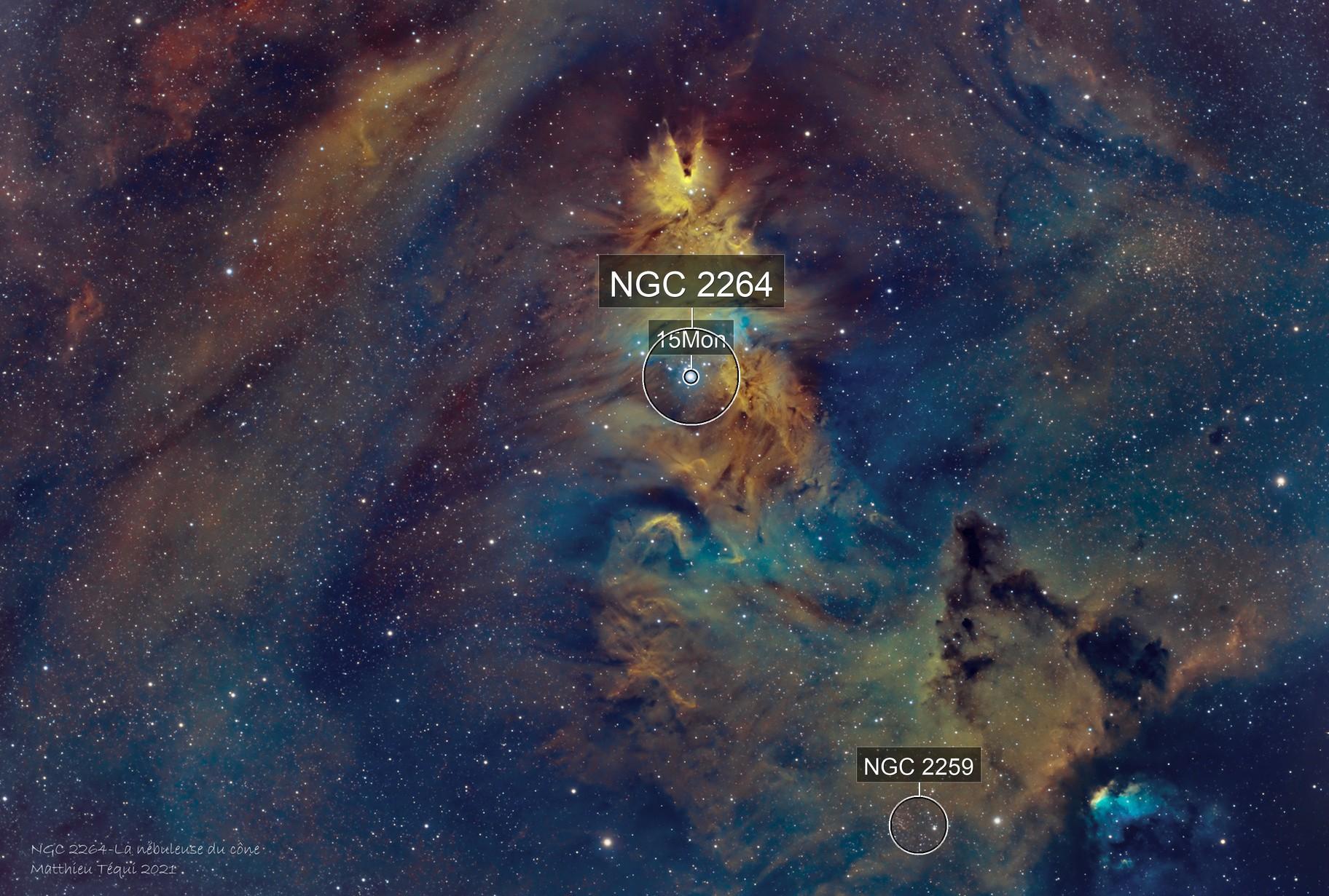 NGC 2264-la nébuleuse du cône SHO