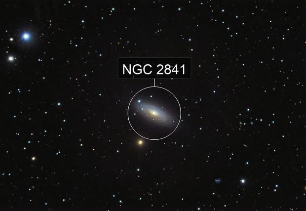 NGC 2841 - Tiger s eye galaxy
