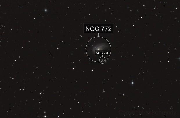 """Die """"Semikolon-Galaxie"""" NGC 772 im Widder (Aries)"""
