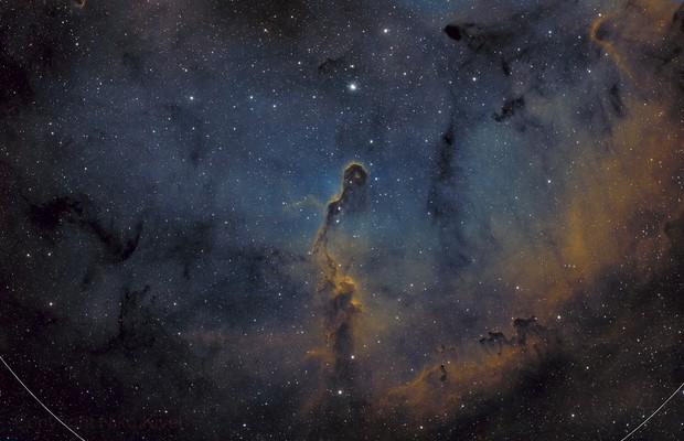Elephant's Trunk Nebula (IC 1396)