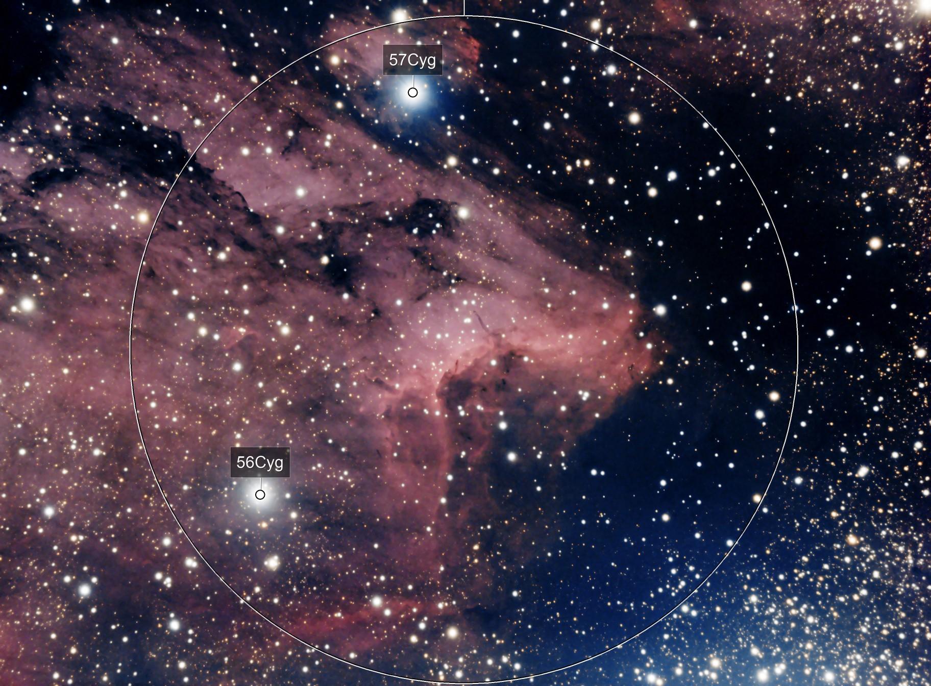 IC 5067 Pelican Nebula