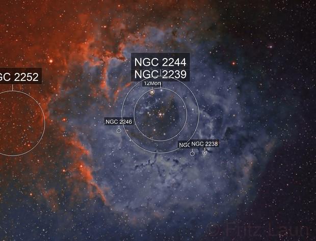 Rosette Nebula - Narrowband