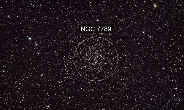 Caroline's Rose Cluster NGC7789