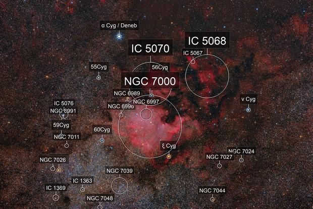 North America NGC7000