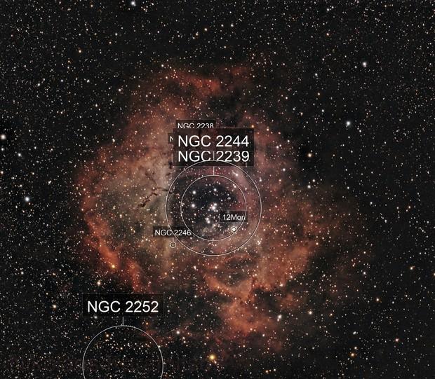 NGC2244