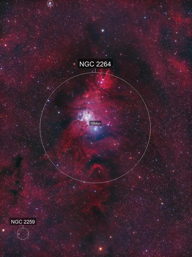 NGC2264: Christmas Tree Cluster