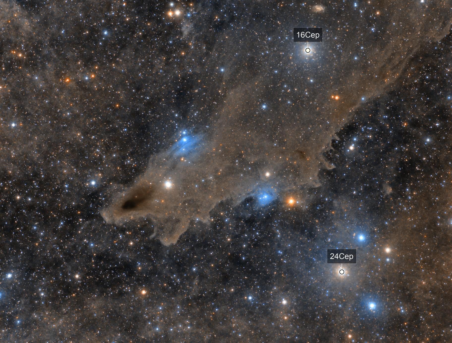 LDN1235: Dust around the Shark Nebula