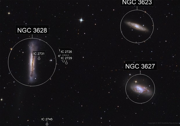 Leo Triplet (M65, M66, and NGC 3628)