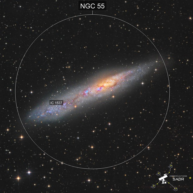 Whale Galaxy NGC55 in Sculptor - Sadr Chili