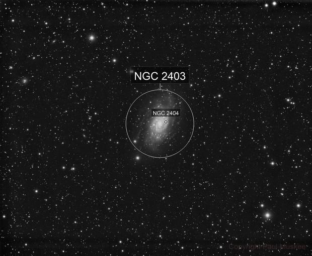 NGC 2403 Luminance