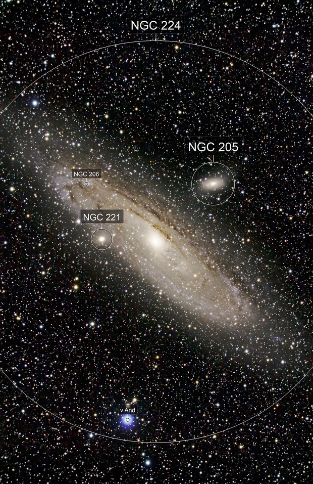 Galactic neighbours: Andromeda galaxy M31 with  M32 and M110